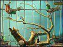 Скриншот №4 для игры 'Легенды Намариэля. Железный лорд. Коллекционное издание'